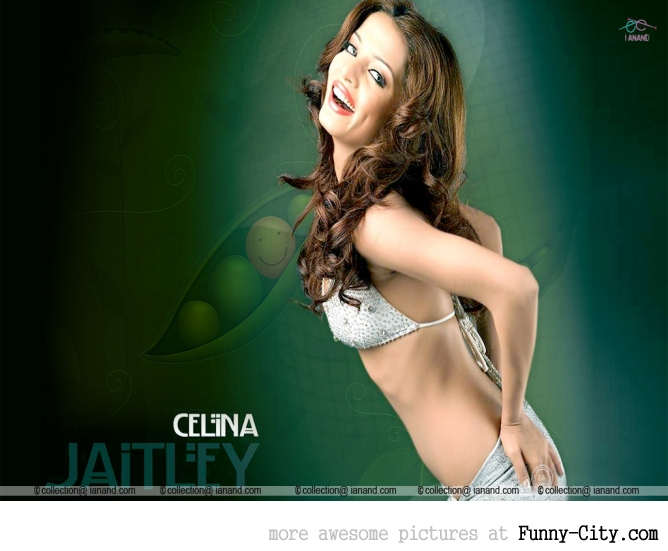 Celina Jaitley [12 photos]