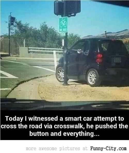 The only way to cross a street safely