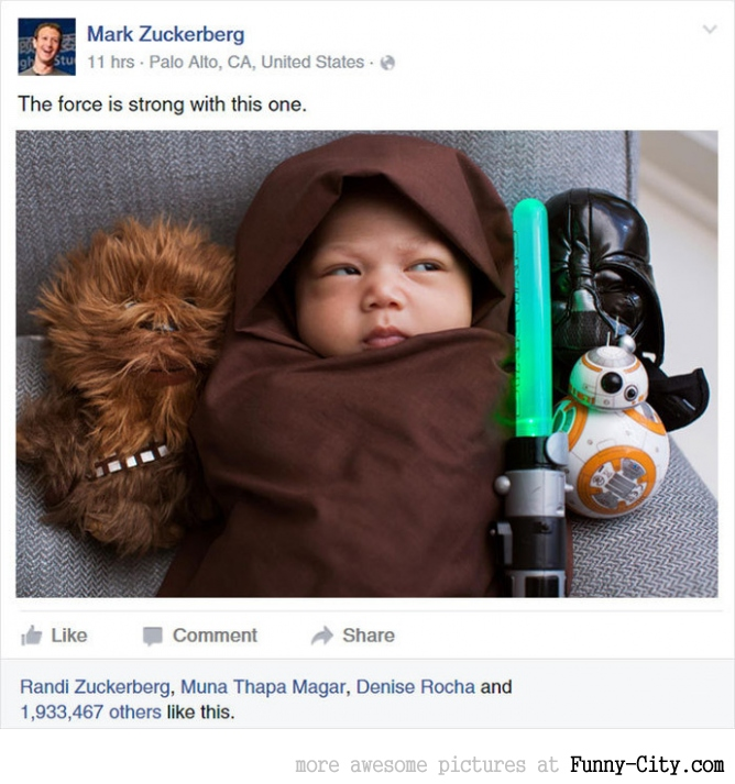 Baby jedis (10 photos)
