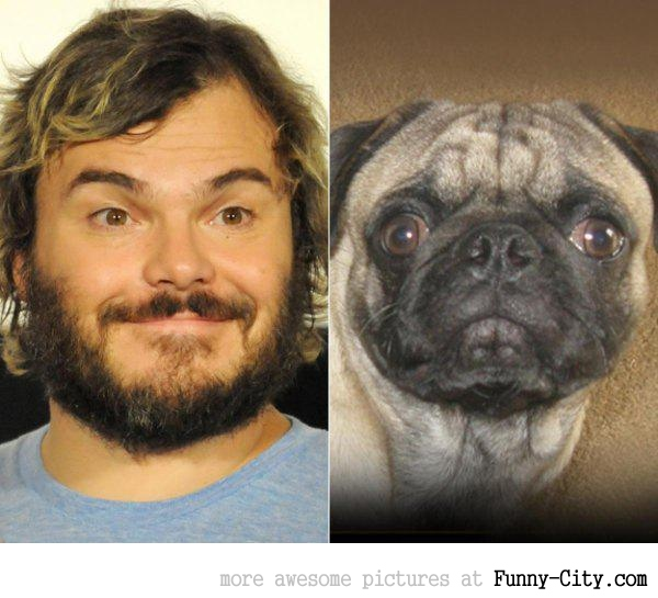 Celebrities and their animal Doppelganger (18 photos) [9289]