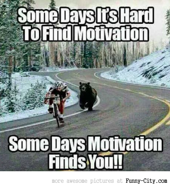 Motivation will find you!