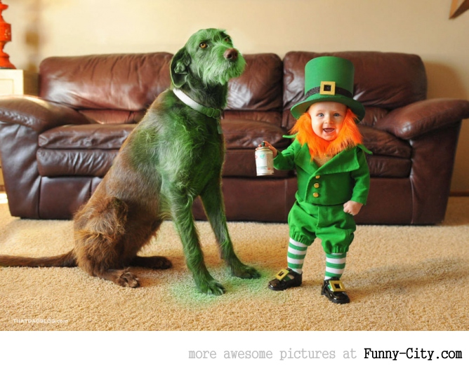 Dad turns his 6-month-old baby into a naughty Leprechaun [7 photos] [11362]